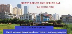 Chuyển đổi mục đích sử dụng đất tại Quảng Ninh