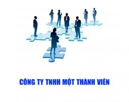 Cơ cấu tổ chức và hoạt động của công ty TNHH 1 thành viên