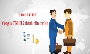 Cơ cấu tổ chức và hoạt động của công ty TNHH 2 thành viên trở lên