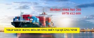 Thủ tục nhập khẩu hàng hóa đường biển tại Quảng Ninh